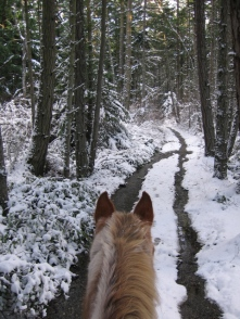 A winter ride. Photo by Ruthie Thompson-Klein