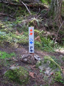Trail marker utilizing custom icon system for wayfinding